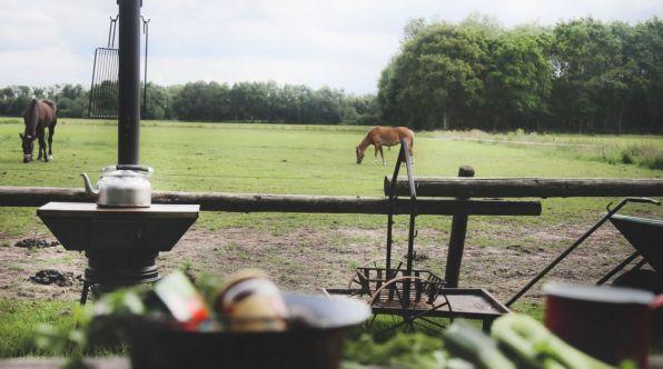 Bijzondere Overnachting Origineel Overnachten Slapen op een boerderij de Jobinghoeve in Grolloo met knuffelschuur in Drenthe17