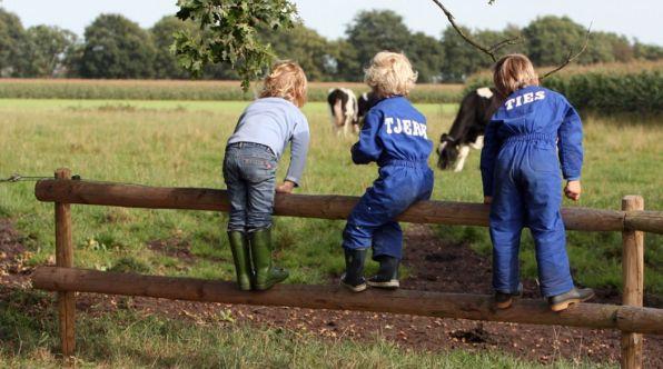 Bijzondere Overnachting Origineel Overnachten Slapen op een boerderij de Jobinghoeve in Grolloo met knuffelschuur in Drenthe23