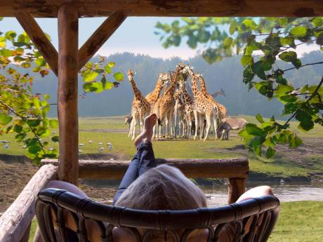 75 euro kortingscode Safari Resort Beekse Bergen