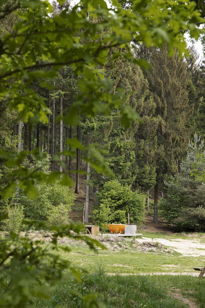 Slapen in het bos in een boshuisje Veluwe Buitenplaast Beekhuizen 16