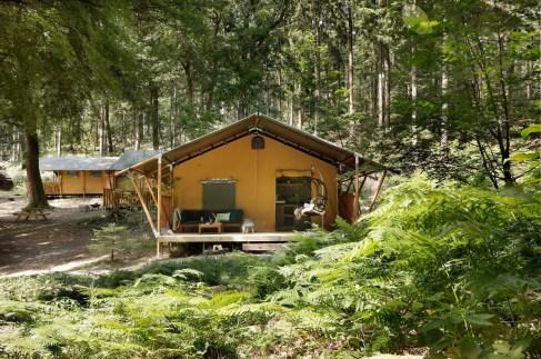 Slapen in het bos in een boshuisje Veluwe Buitenplaast Beekhuizen 18
