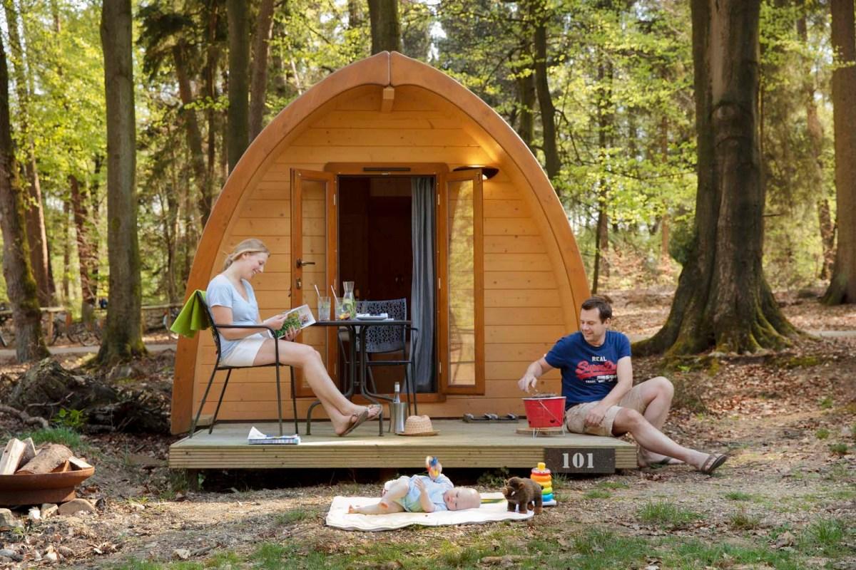 Slapen in een knus boshuisje op de Veluwe