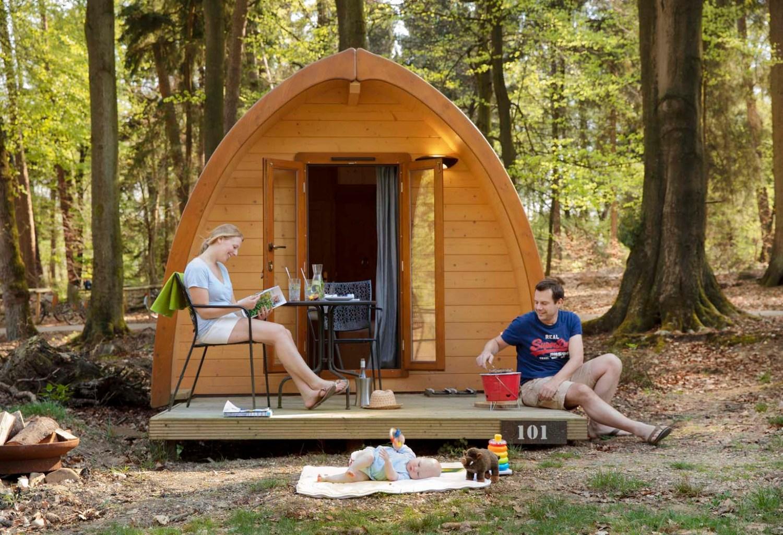 Slapen in het bos in een boshuisje Veluwe Buitenplaast Beekhuizen 6