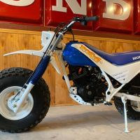 Ridden Once - 1986 Honda Fat Cat