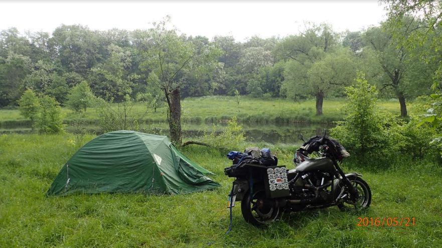 monty-myrtle-yoshi-camping