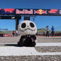 Contest Intermission - Aprilia's Austin MotoGP Giveaway