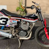 Rare Project - 1988 Wood-Rotax Flat Tracker
