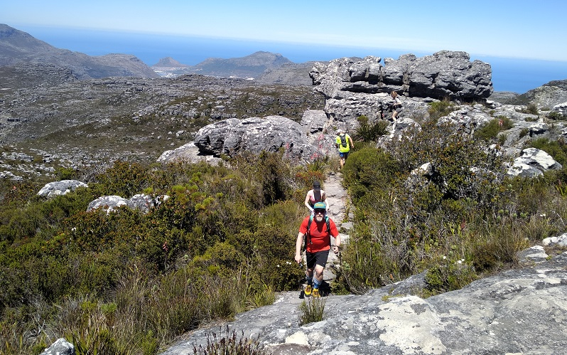 Table Mountain Hike, Cape Town (Full Day)