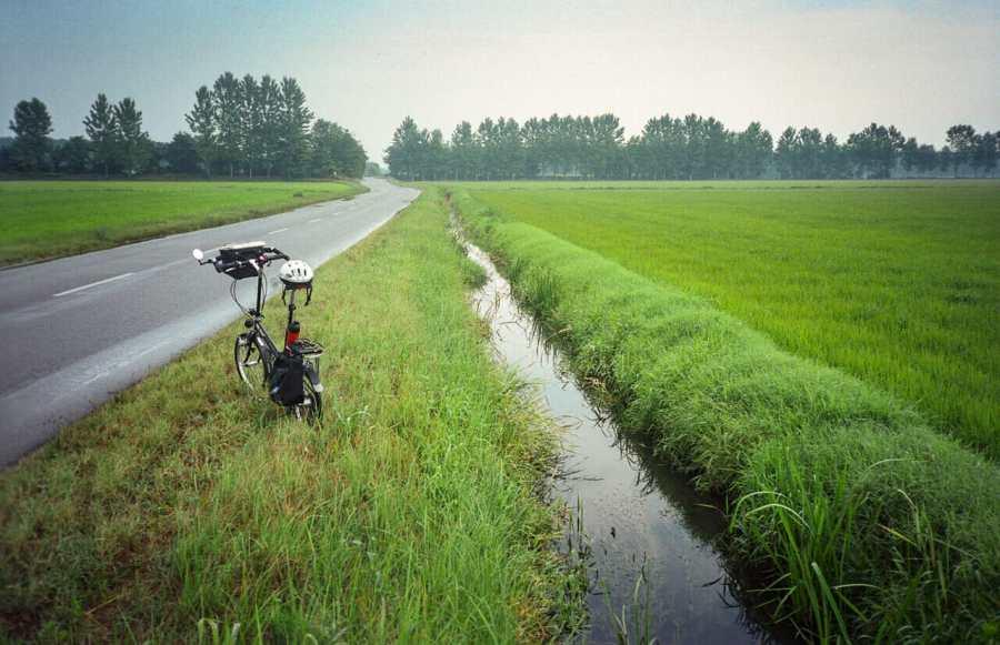 biking by Italian rice paddies