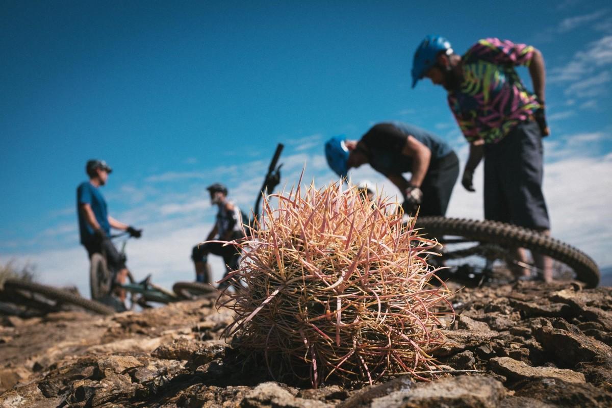 Slow Roll Southwest Utahs Steady Rise To Riding Fame Bike Magazine