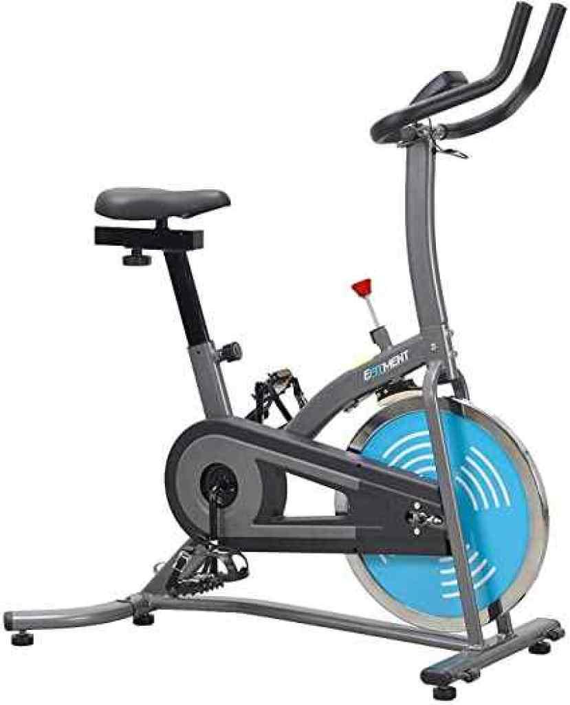 best indoor cycling bike under $300