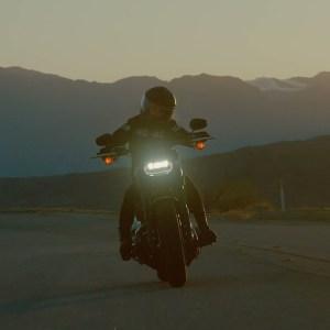 2021 Fat Bob 114 | Harley-Davidson