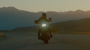 2021 Fat Bob 114   Harley-Davidson