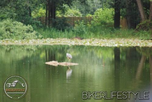 3bs-biker-132