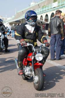 brightona-biker_081