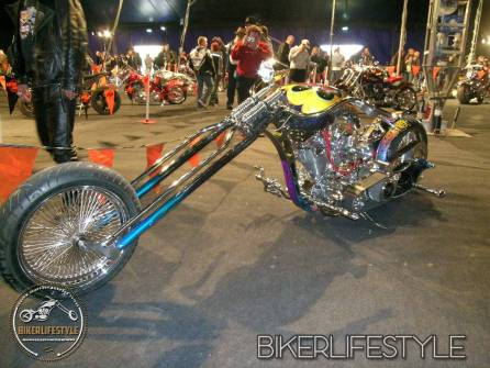 bulldogbash164