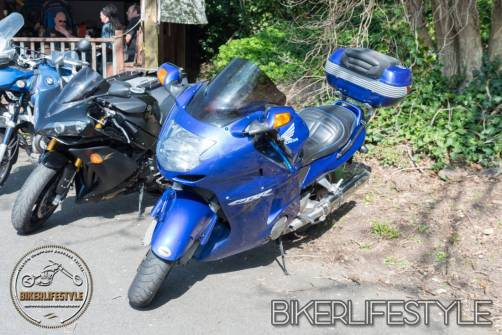 bugsplatz-mcc-011