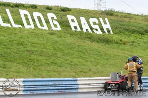 bulldog-bash-2017-rwyb-250