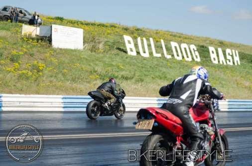 bulldog-bash-1628