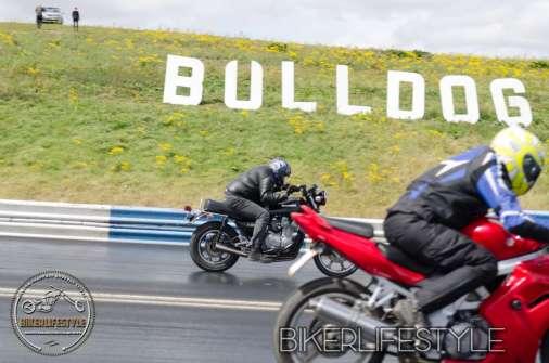 bulldog-bash-1754