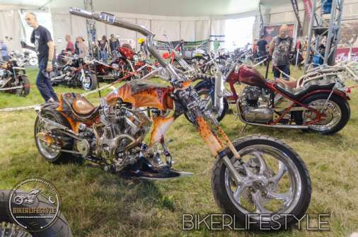 bulldog-bash-0244a