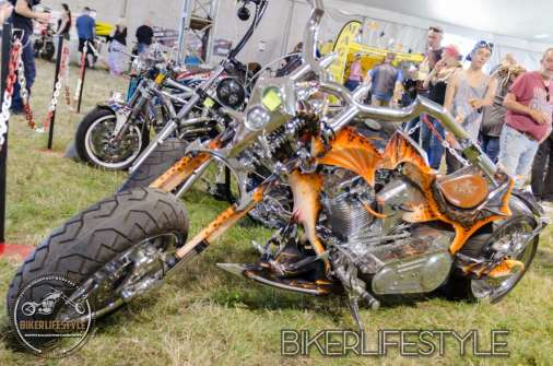 bulldog-bash-0244b