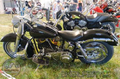 bulldog-bash-0353
