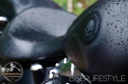 harley-tank-emblems-019