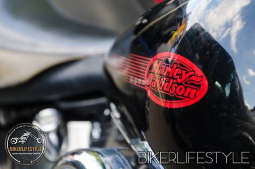 harley-tank-emblems-037