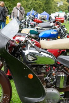 himley-classic-show-138