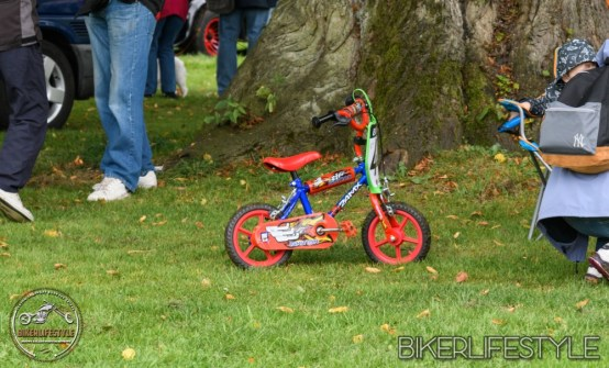 himley-classic-show-139