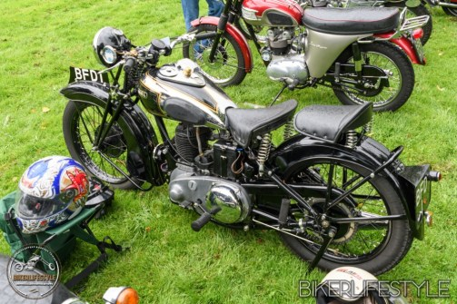 himley-classic-show-142
