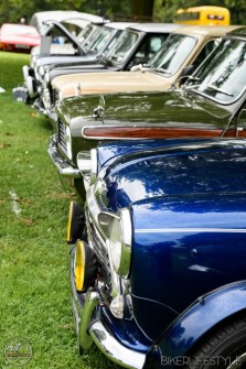 himley-classic-show-170