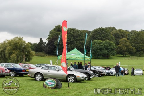himley-classic-show-199