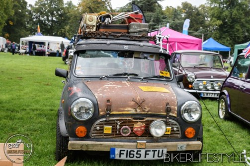 himley-classic-show-211