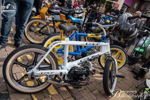hinckley-motor-show-232