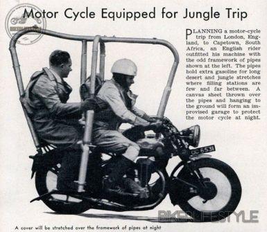 jungle-bikea
