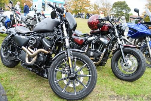 sand-n-motorcycles-111