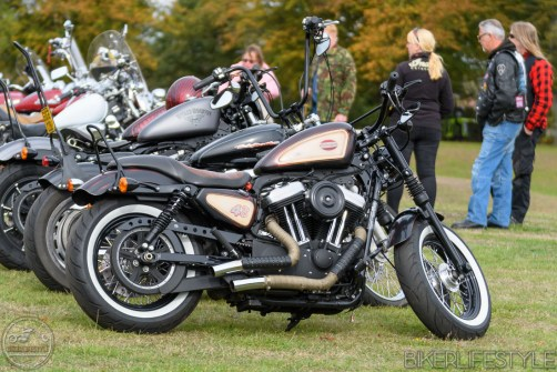 sand-n-motorcycles-307
