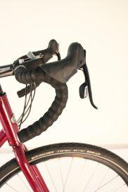 gebla rohbox rohloff shifter cycle monkey red bearIMG_8806