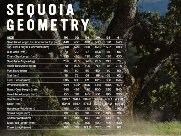 Specialized Sequioa Geometry Chart