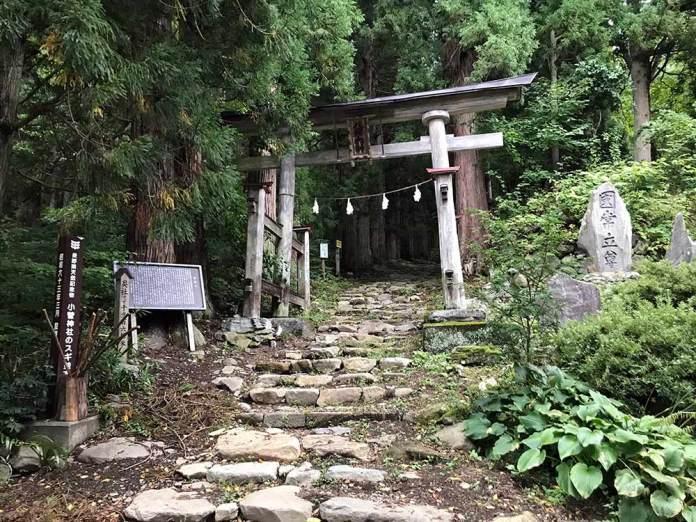mountain biking nozawa onsen mtb trails in nagano japan with guide from compass house bike shop