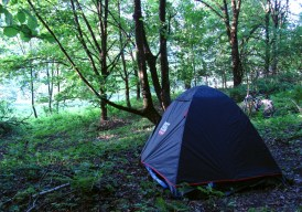 Camping spot where we met wild boars