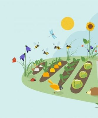 Dal gruppo di Mestre: Stop Pesticidi