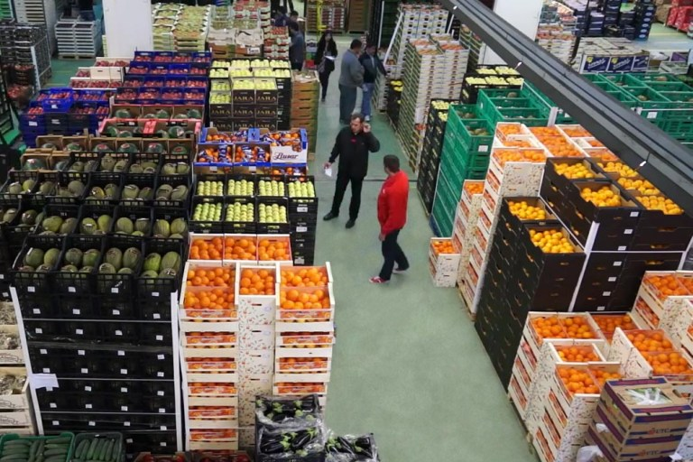 Almacen Bilcosa Mercabilbao Frutas y verduras