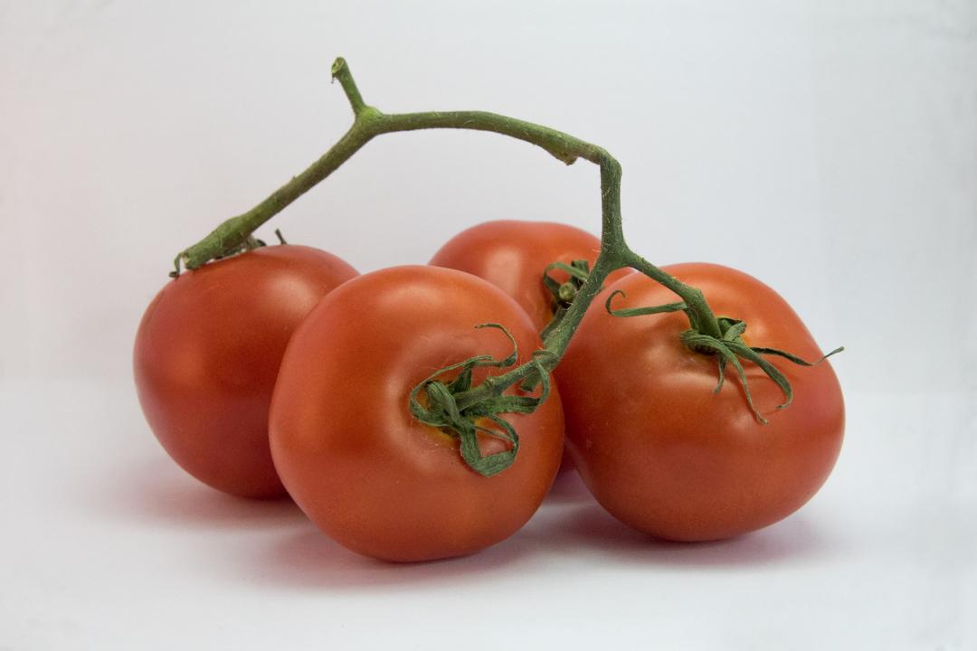 Tomate rama Bilcosa verduras mercabilbao