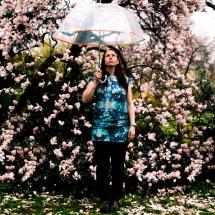 bildkonfetti-magnolien-aschaffenburg-isa - 24