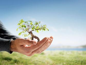 CEMS-Masterausbildung setzt Zeichen für den Klimaschutz