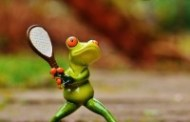 Biletul zilei tenis 30 Octombrie 2016