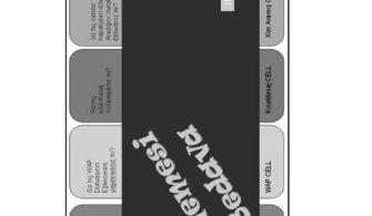 Paket Programlar Dersi Word Uygulama Örnek Dosyaları